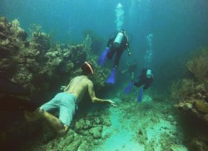Dive cours Mahahual